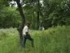 Grau savanna, 7-11