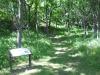 motor-mill-savanna-trail-2-7-25-11-250