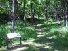 motor-mill-savanna-trail-2-7-25-11