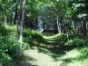 motor-mill-savanna-trail-7-25-11