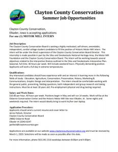 2020 Motor Mill Summer Internship